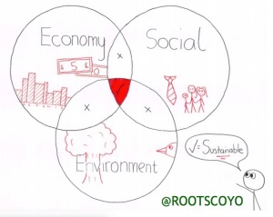 roots coyo triple bottom line