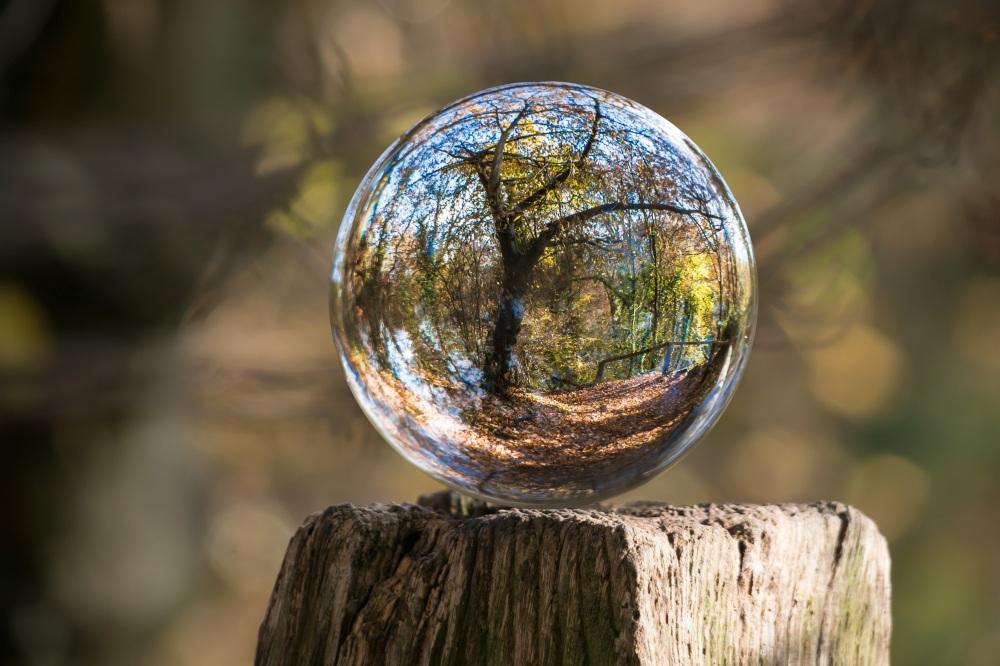 nature globe